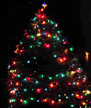 Christmas tree lighted