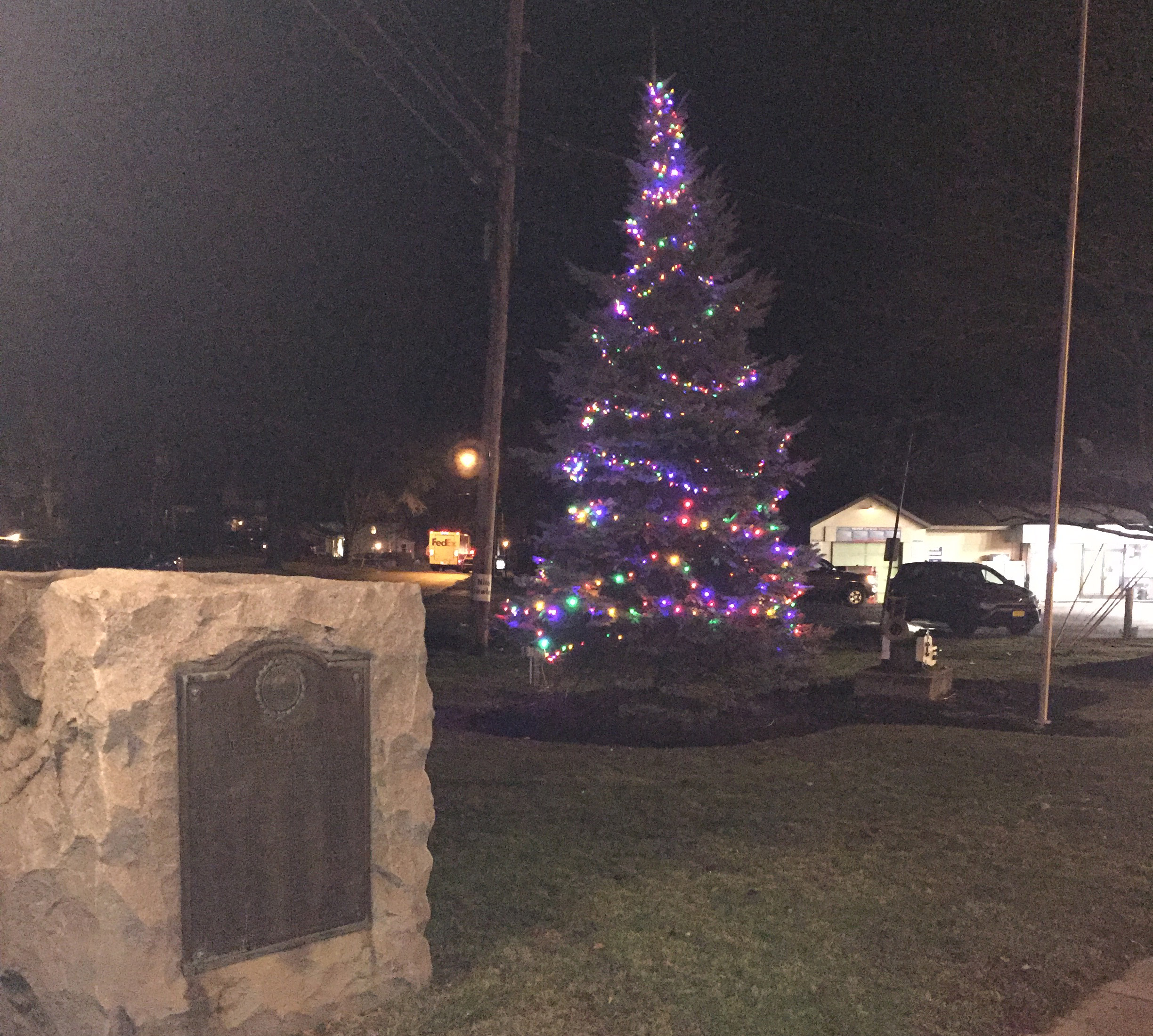 village christmas tree lit